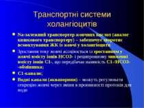 Транспортні системи холангіоцитів Na-залежний транспортер жовчних кислот (ана...