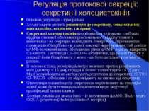 Регуляція протокової секреції: секретин і холецистокінін Основна регуляція – ...