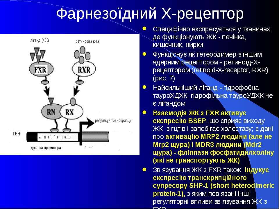 Фарнезоїдний Х-рецептор Специфічно експресується у тканинах, де функціонують ...