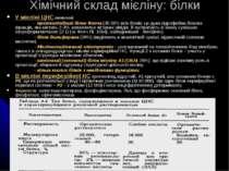 Хімічний склад мієліну: білки У мієліні ЦНС виявлені: - протеоліпідний білок ...