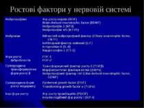 Ростові фактори у нервовій системі Нейротрофіни Ф-р росту нервів (NGF) Brain-...