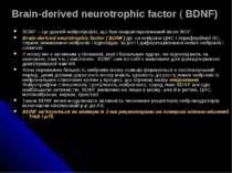 Brain-derived neurotrophic factor ( BDNF) BDNF – це другий нейротрофін, що бу...