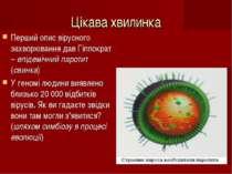 Цікава хвилинка Перший опис вірусного захворювання дав Гіппократ – епідемічни...