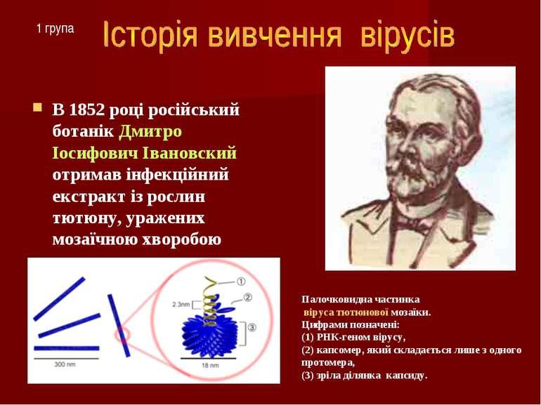 В 1852 році російський ботанік Дмитро Іосифович Івановский отримав інфекційни...