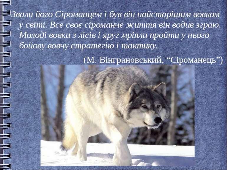 Звали його Сіроманцем і був він найстарішим вовком у світі. Все своє сіроманч...