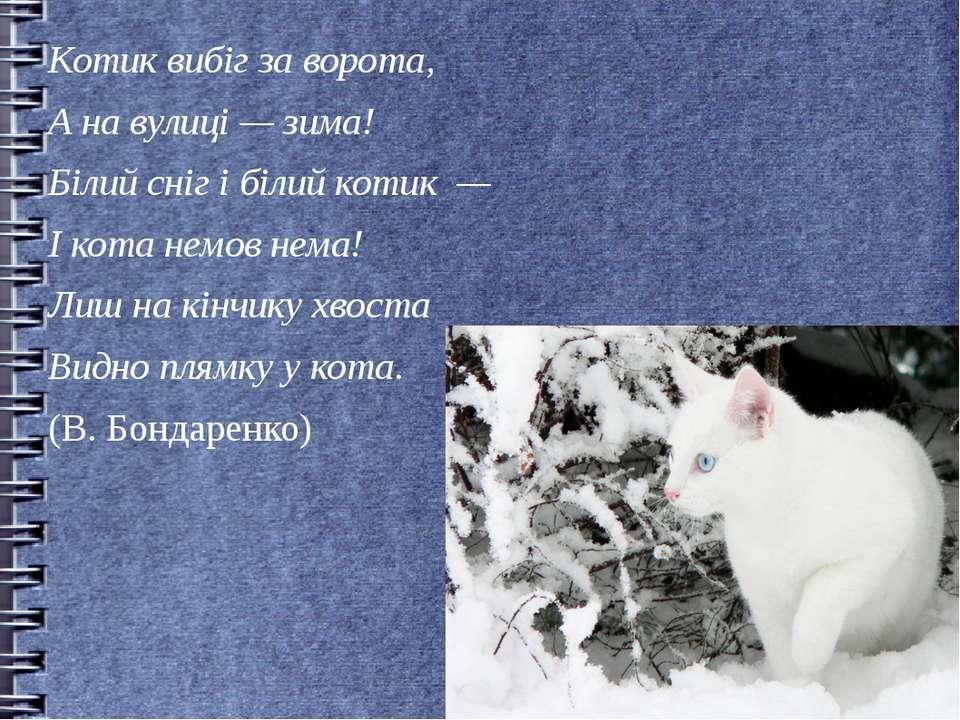 Котик вибіг за ворота, А на вулиці — зима! Білий сніг і білий котик — І кота ...