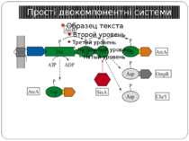 Прості двокомпонентні системи