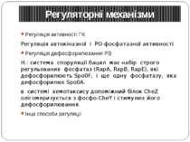 Регуляторні механізми Регуляція активності ГК Регуляція автокіназної і РО-фос...