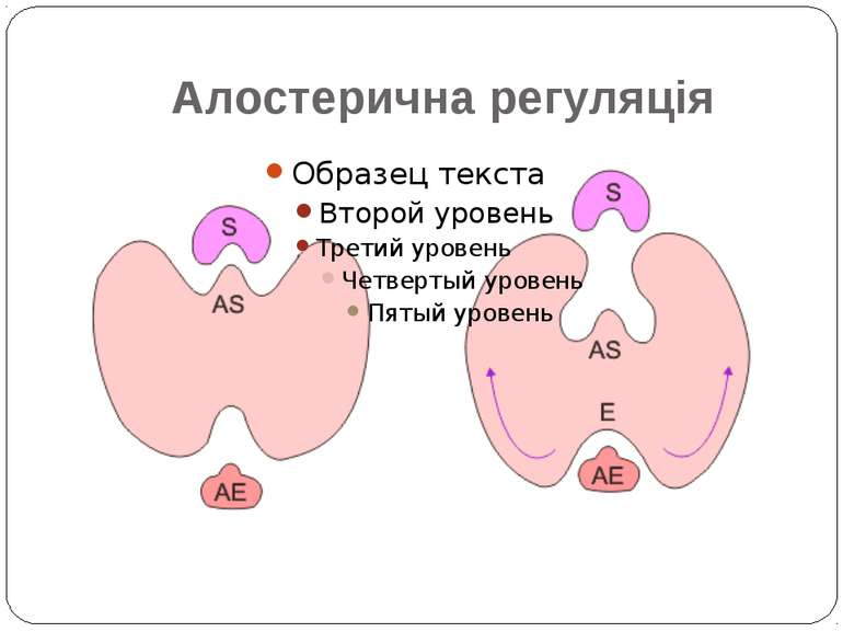 Алостерична регуляція
