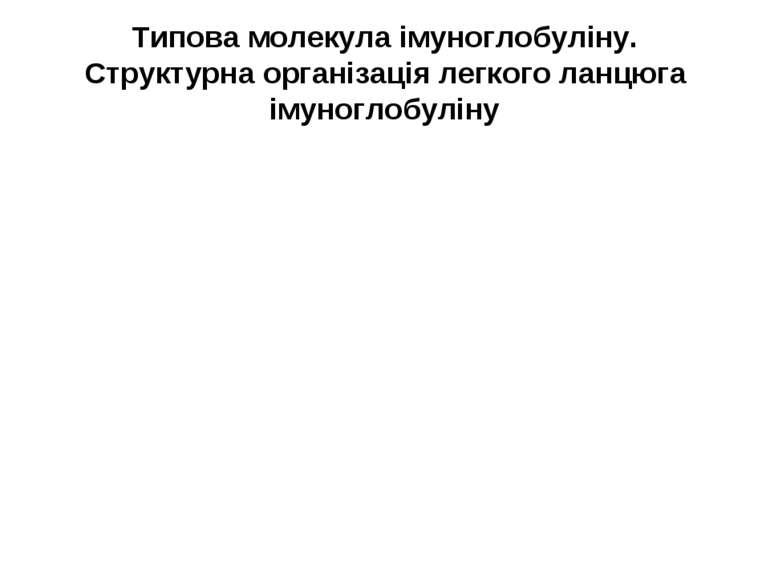 Типова молекула імуноглобуліну. Структурна організація легкого ланцюга імуног...