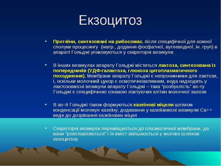 Екзоцитоз Протеїни, синтезовані на рибосомах, після специфічної для кожної сп...
