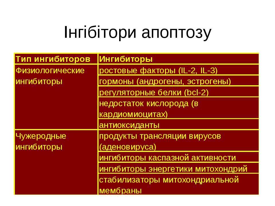 Інгібітори апоптозу
