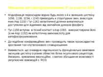 Механізм автофосфорилювання ІР за участю АФК Модифікація пероксидом водню буд...