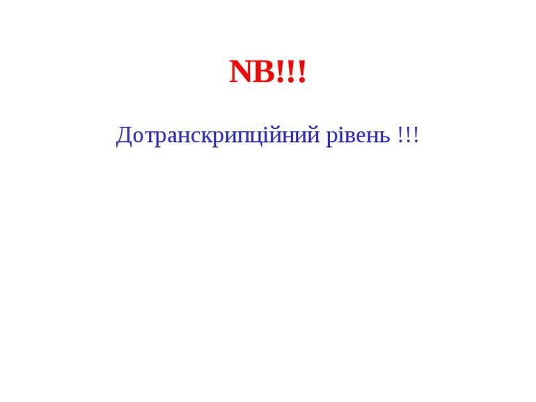 NB!!! Дотранскрипційний рівень !!!