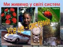 Рослина Тварина Людина Ліс та річка Автомобіль Годинник