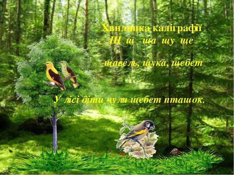 Хвилинка каліграфії Щ щ ща щу ще щавель, щука, щебет У лісі діти чули щебет п...