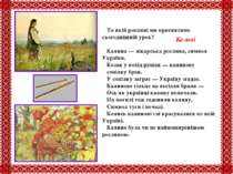 То якій рослині ми присвятимо сьогоднішній урок? Калина — лікарська рослина, ...