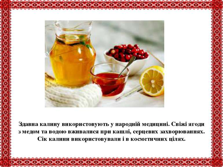 Здавна калину використовують у народній медицині. Свіжі ягоди з медом та водо...