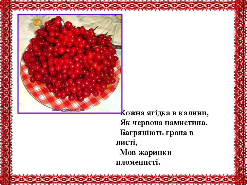 Кожна ягідка в калини, Як червона намистина. Багряніють грона в листі, Мов жа...