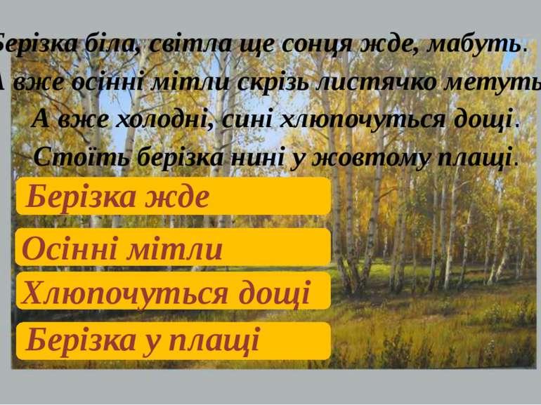 Берізка біла, світла ще сонця жде, мабуть. А вже осінні мітли скрізь листячко...