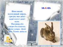 за…ць Невеликий полохливий звірок, гризун; має довгі задні ноги і довгі вуха....