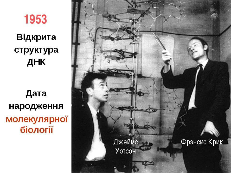 1953 Фрэнсис Крик Джеймс Уотсон Відкрита структура ДНК Дата народження молеку...