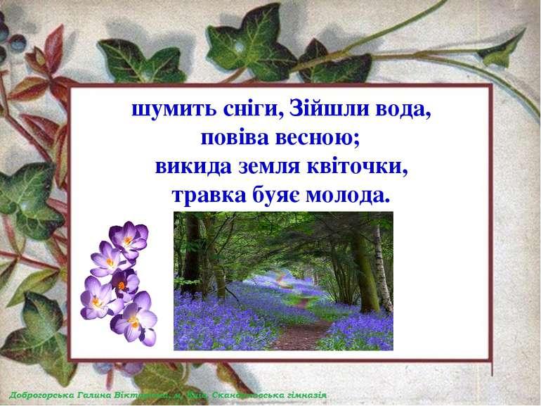 шумить сніги, Зійшли вода, повіва весною; викида земля квіточки, травка буяє ...