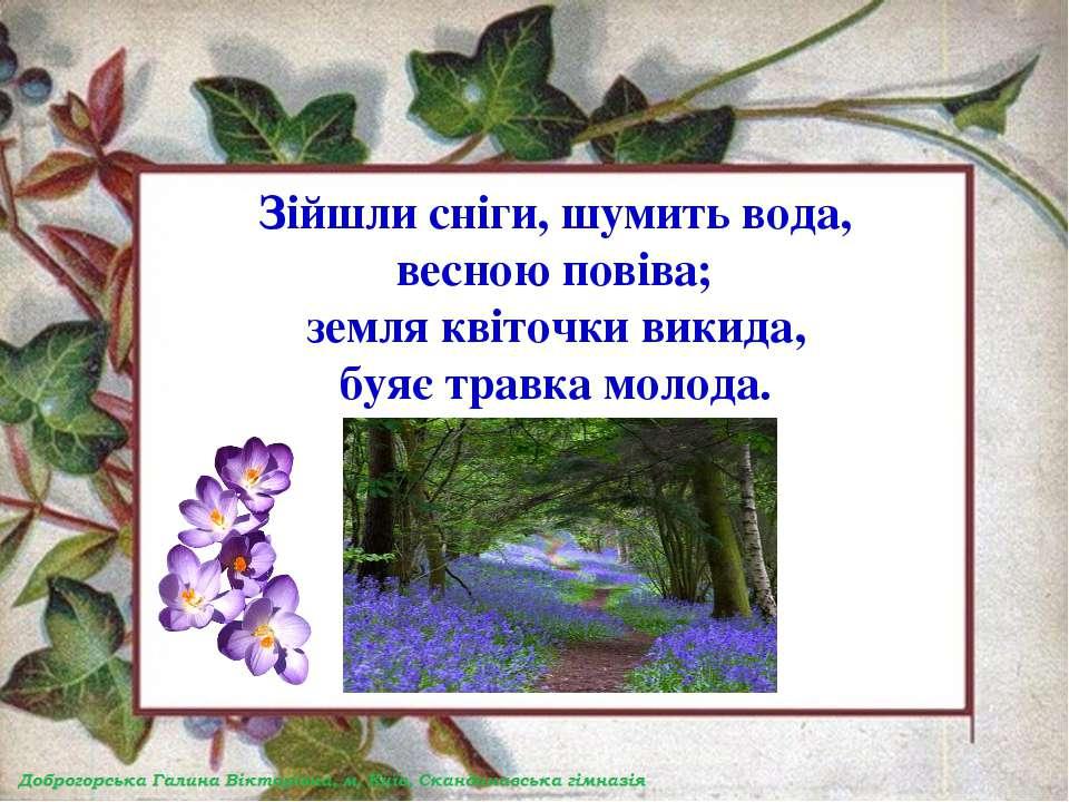 Зійшли сніги, шумить вода, весною повіва; земля квіточки викида, буяє травка ...