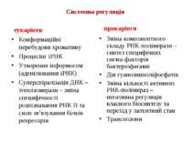 Системна регуляція еукаріоти Конформаційні перебудови хроматину Процесінг іРН...