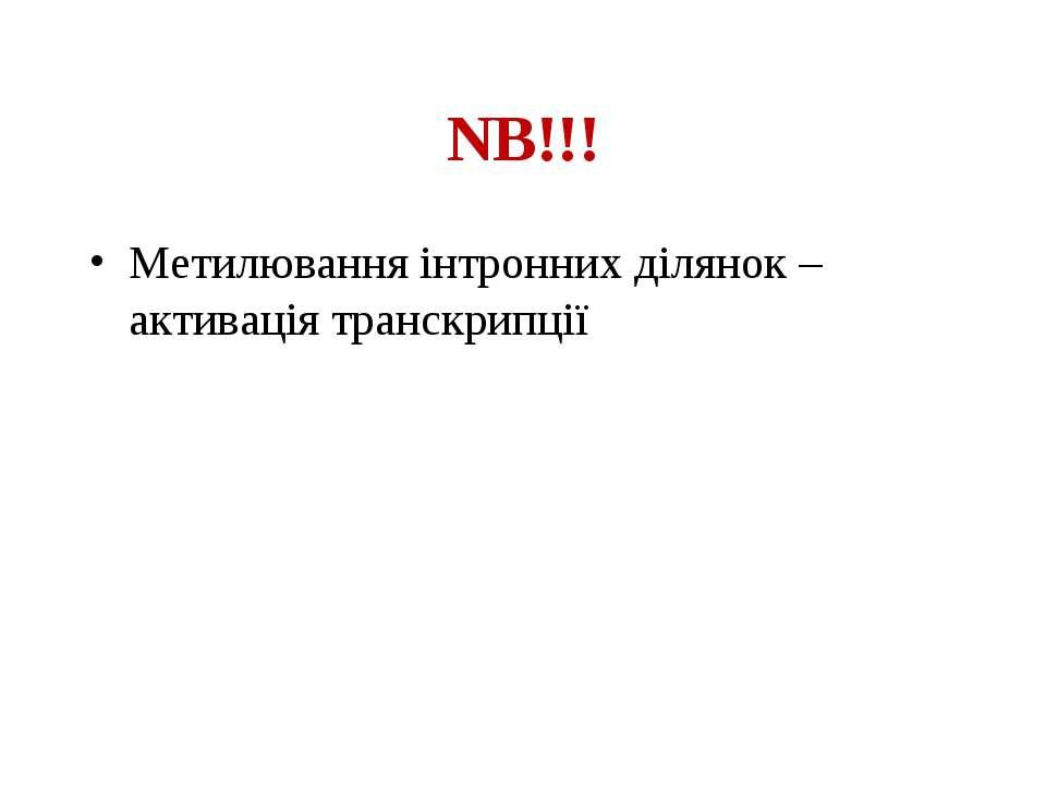 NB!!! Метилювання інтронних ділянок – активація транскрипції