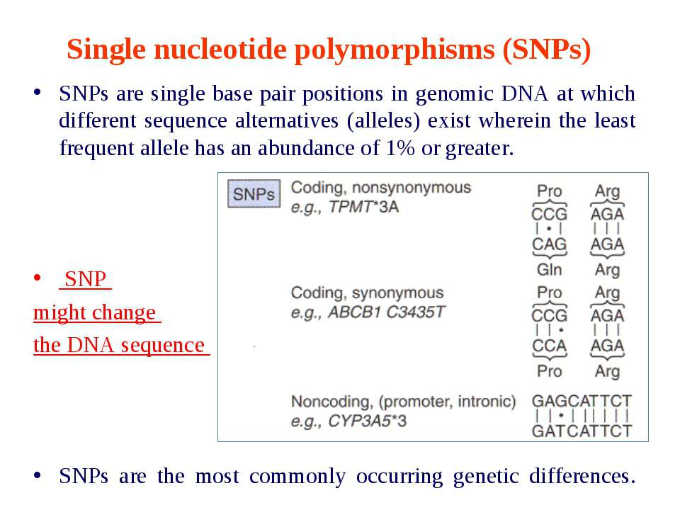 Single nucleotide polymorphisms (SNPs) SNPs are single base pair positions in...