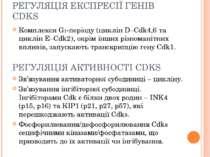 РЕГУЛЯЦІЯ ЕКСПРЕСІЇ ГЕНІВ CDKS Комплекси G1-періоду (циклін D–Cdk4,6 та циклі...