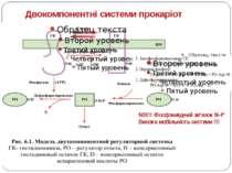 Двокомпонентні системи прокаріот NB!!! Фосфоамідний зв'язок N-P Висока мобіль...
