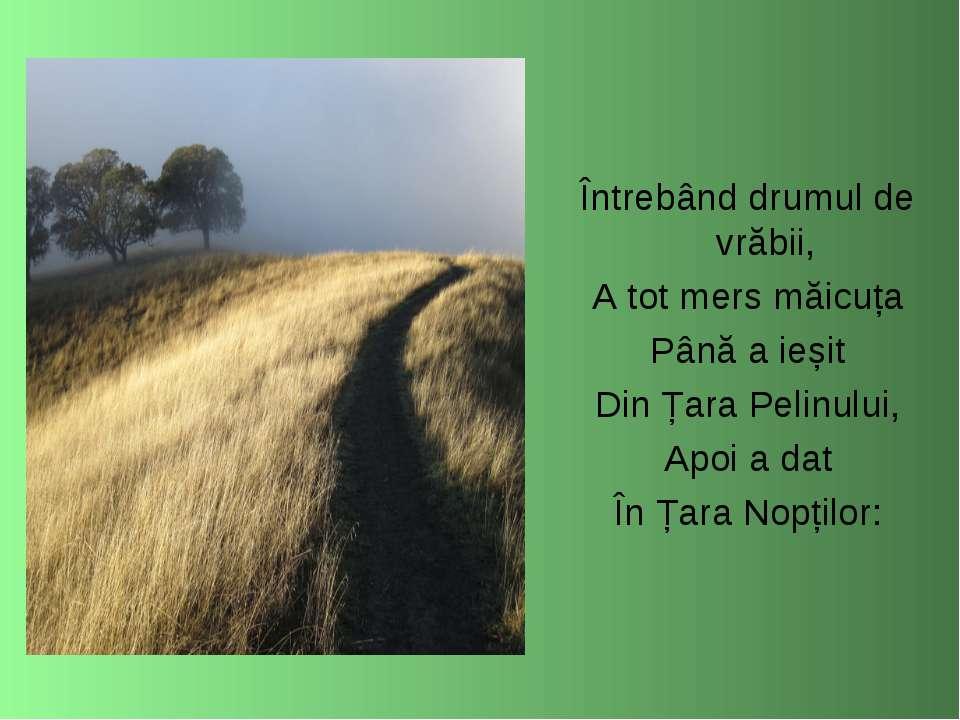 Întrebând drumul de vrăbii, A tot mers măicuța Până a ieșit Din Țara Pelinulu...