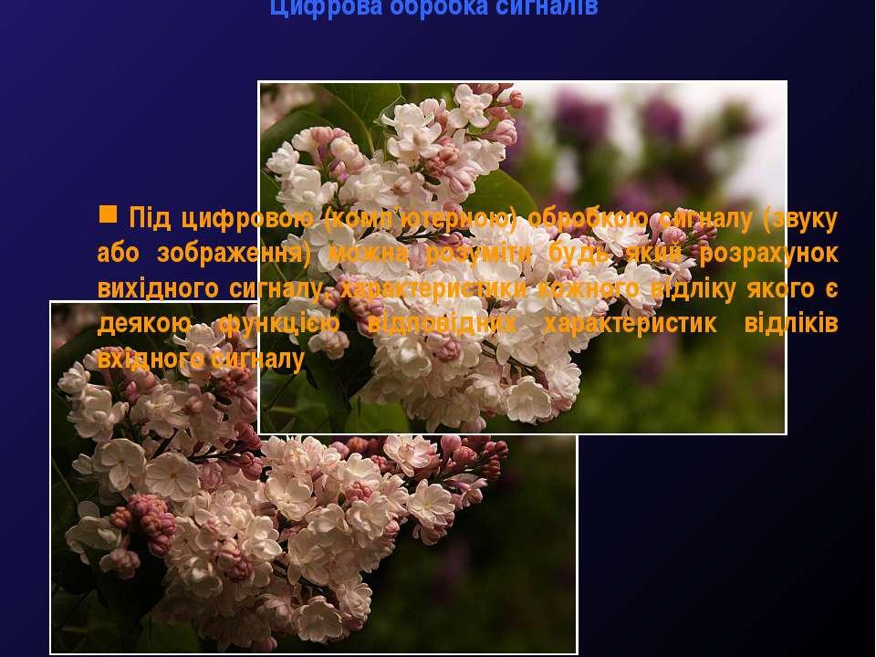 Цифрова обробка сигналів М.Кононов © 2009 E-mail: mvk@univ.kiev.ua * Під цифр...