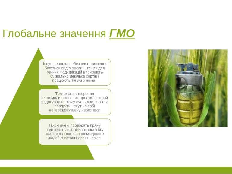 Глобальне значення ГМО
