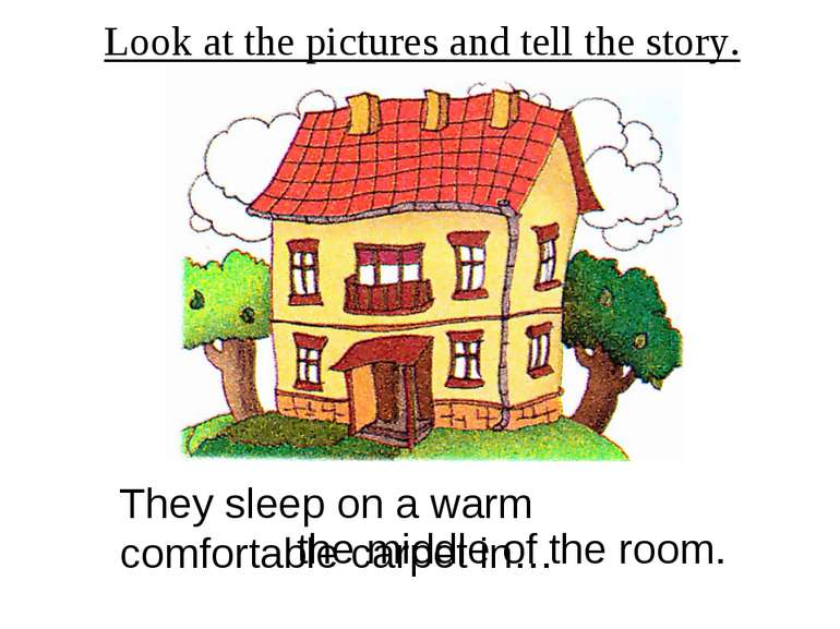 Look at the pictures and tell the story. They sleep on a warm comfortable car...