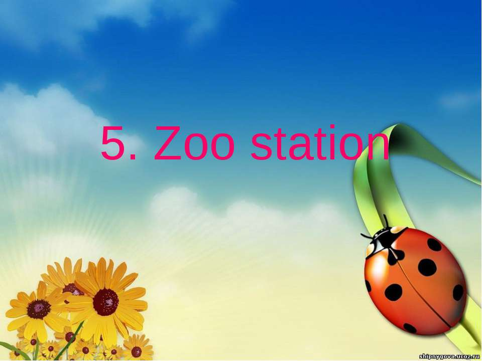5. Zoo station
