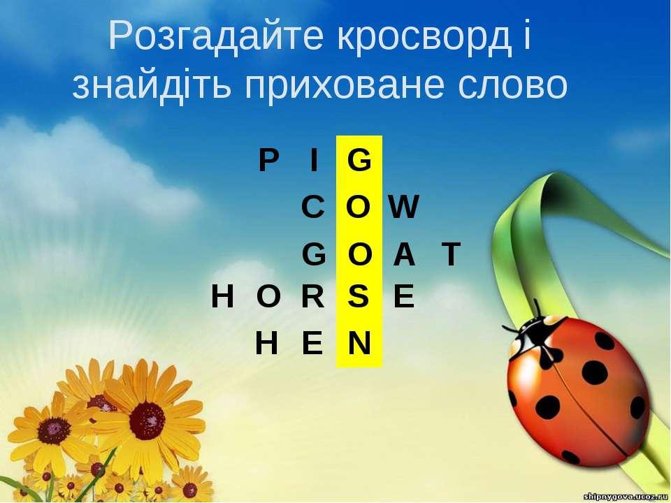 Розгадайте кросворд і знайдіть приховане слово              P I ...