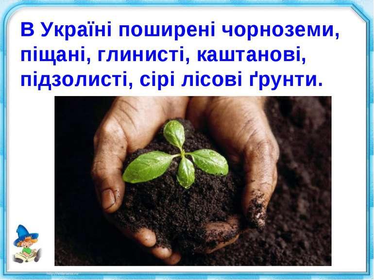 В Україні поширені чорноземи, піщані, глинисті, каштанові, підзолисті, сірі л...