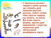 У багатьох рослин і тварин є різні органи, що служать для хапання (вусики рос...