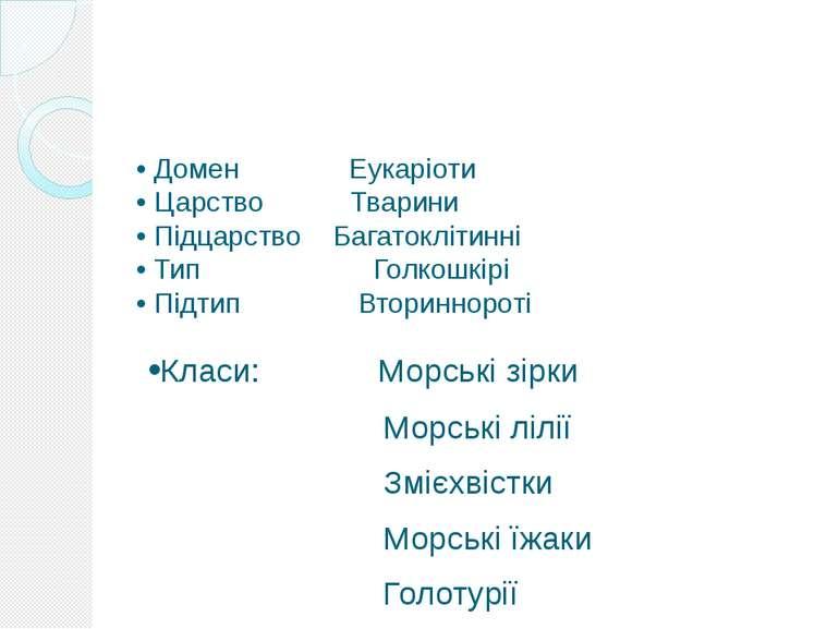 Біологічна класифікація • Домен Еукаріоти • Царство Тварини • Підцарство Бага...