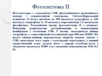 Фотосистема ІІ Фотосистема — сукупність СЗК, фотохімічного реакційного центру...