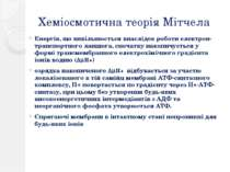 Хеміосмотична теорія Мітчела Енергія, що вивільнюється внаслідок роботи елект...