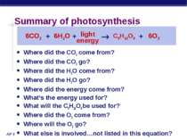 Summary of photosynthesis Where did the CO2 come from? Where did the CO2 go? ...