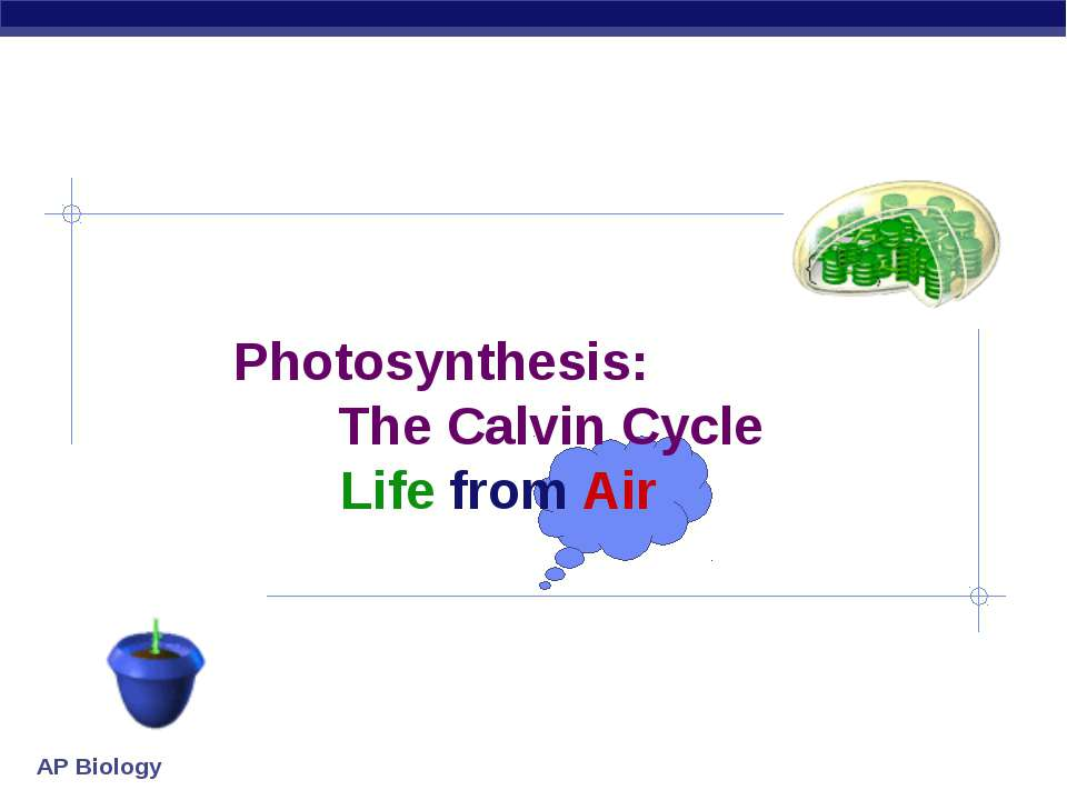 Photosynthesis: The Calvin Cycle Life from Air AP Biology