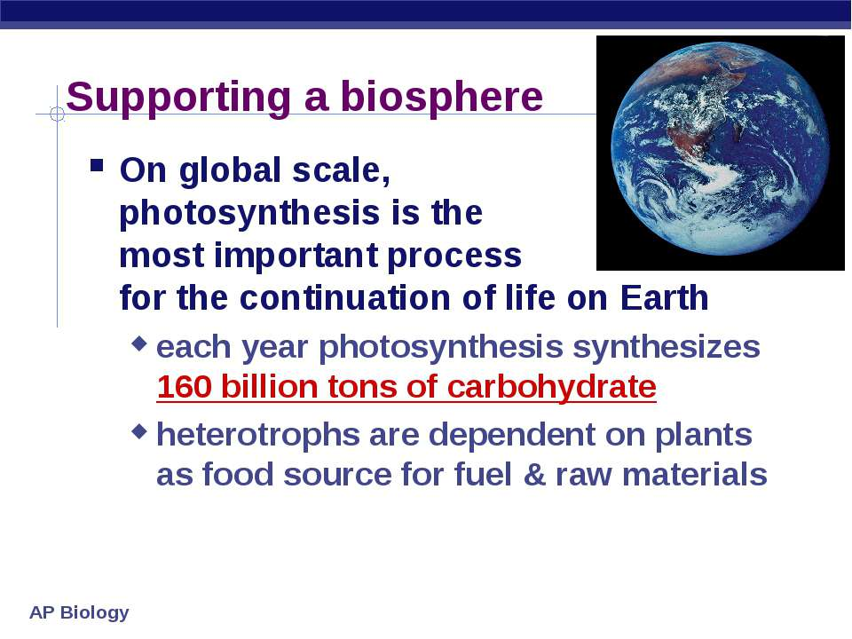 Supporting a biosphere On global scale, photosynthesis is the most important ...