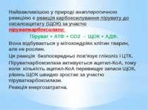 Найважливішою у природі анаплеротичною реакцією є реакція карбоксилування пір...