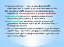 Гліоксилатний шунт – одна з модифікацій ЦТК, функцією якої є синтез додатково...