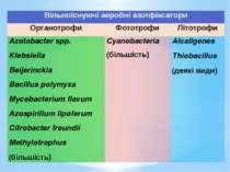 Вільноіснуючіаеробніазотфіксатори Органотрофи Фототрофи Літотрофи Azotobacter...